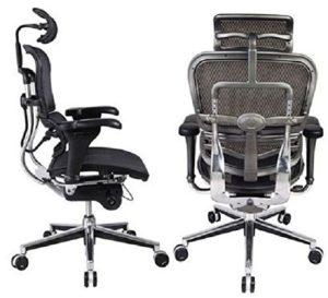 Ergohuman High Back Swivel Chair Review